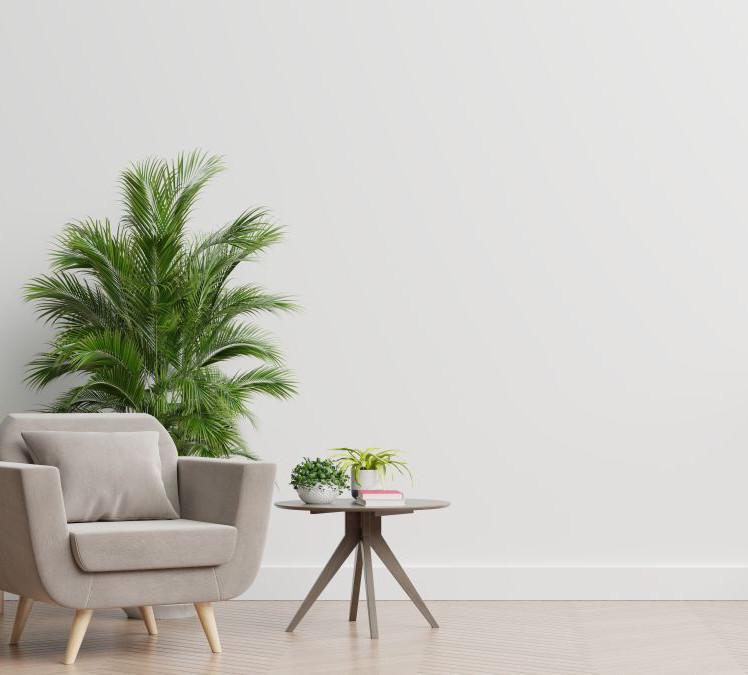 Como-aplicar-pintura-antimoho-en-interiores